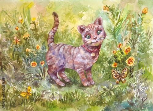 Akwareli ilustracja szary mały kot