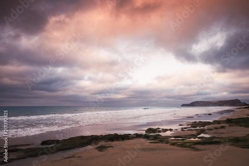 Foto op Aluminium Zalm Wet stones with seaweed, beach landscape