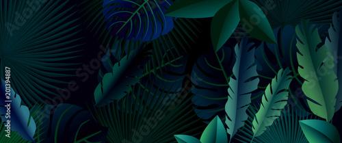 Dark forest. The dark jungle - 201394887