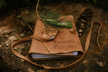 Leather Journal Outside On A Log