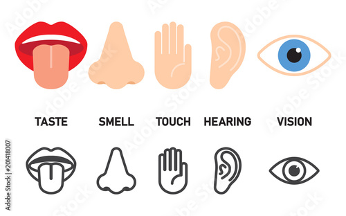 Foto  Icon set of five human senses