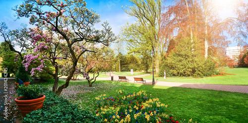 Frühlingserwachen im Parc de l'Orangerie, Straßburg, Frankreich