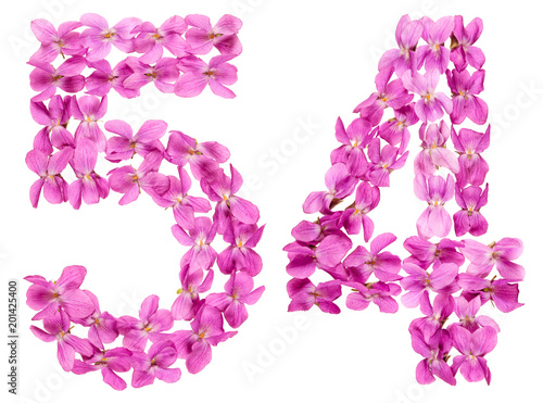 Poster  Arabic numeral 54, fifty four, from flowers of viola, isolated on white backgrou