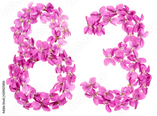 Poster  Arabic numeral 83, eighty three, from flowers of viola, isolated on white backgr