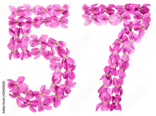 Fotografie, Obraz  Arabic numeral 57, fifty seven, from flowers of viola, isolated on white backgro