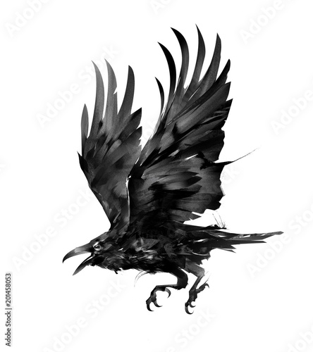 czarny-kruk-w-locie-ze-skrzydlami-ku-gorze