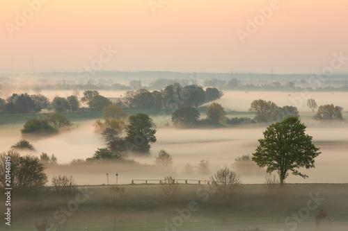 Foto auf AluDibond Khaki Landschaft im Nebel