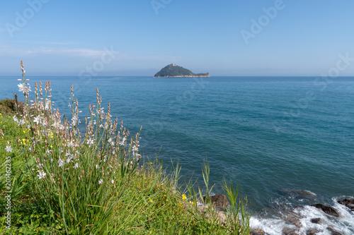 Liguria, Italy - Gallinara Island nature reserve Canvas Print