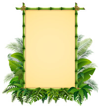 Green Bamboo Frame On The Leaves