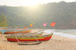 Bright colorful boats with flags for catching fish stood on the shore of the Indian Ocean. India, Goa