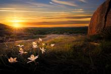 Sunrise On Enchanted Rock