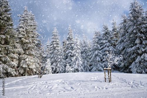 Fotobehang Winter Wonderland White Snow Background