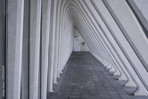 les arcs symetriques Billede på lærred