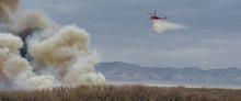 Saddler Island Brush Fire In Fruita Colorado