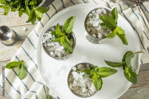 Valokuva  Homemade Kentucky Mint Julep