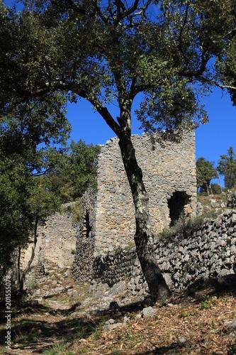 Château de Flassans sur Issole Poster