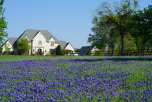 Countryside Home With Texas Bl...