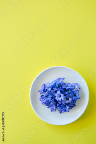 Foto op Plexiglas Spa Group of violet petals of hyacinth flower in a white plate on a yellow background. Top view and copy space.