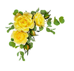 Yellow rose flowers with eucalyptus leaves