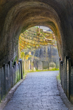 View Of A Path Leading To A Cemetery Next To The Liverpool Cathedral, England