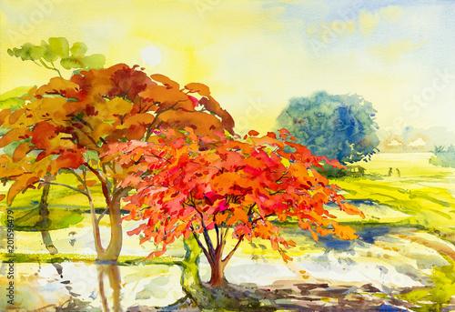 Akwarela krajobrazowy obraz kolorowy Pawi kwiatów drzew pole uprawne