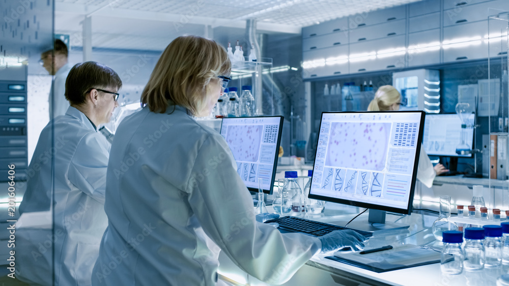 Fototapeta Female and Male Scientists Working on their Computers In Big Modern Laboratory. Various Shelves with Beakers, Chemicals and Different Technical Equipment is Visible.