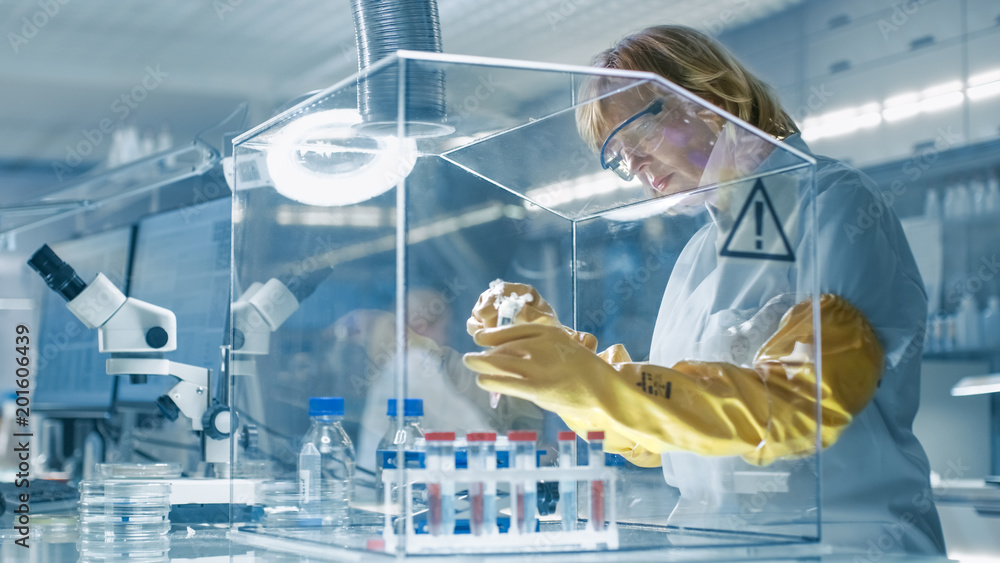 Fototapety, obrazy: Senior Female Epidemiologist Works with Samples in Isolation Glove Box. She's in a Modern, Busy Laboratory Equipped with State of the Art Technology.