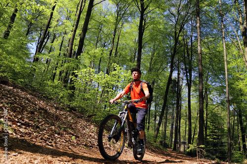 Mountainbiker im sommerlichen Wald Wallpaper Mural