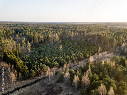 Papiers peints Cappuccino drone image. aerial view of rural area with swamps, lakes and forests