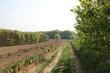 Naturlandschaft mit Ackerland