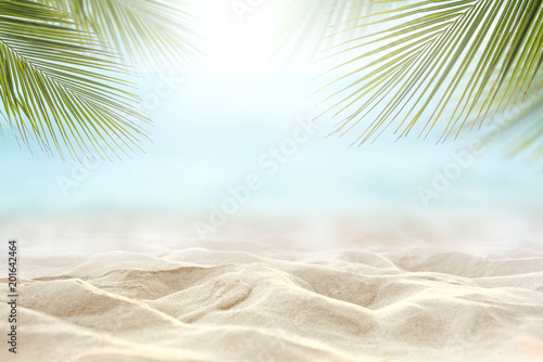 Foto auf AluDibond Licht blau Sand with blurred Palm and tropical beach and sea background, Summer vacation and travel concept. Copy space