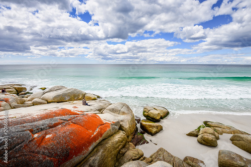 Photo sur Aluminium Ile Beautiful sunny summer coast view from Bay Of Fires to blue Tasman Sea with crystal clear water surrounded by red orange colorful shore rocks and white sandy beach, Binalong Bay, Tasmania, Australia