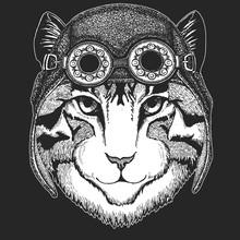 Image Of Domestic Cat Hand Drawn Illustration For Tattoo, Emblem, Badge, Logo, Patch, T-shirt Cool Animal Wearing Aviator, Motorcycle, Biker Helmet.
