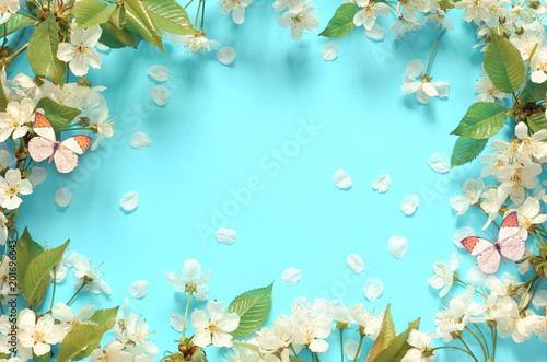 Canvas Prints Countryside Cherry blossom in wild and butterfly.