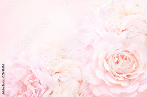 Summer blossoming delicate rose frame, blooming roses flowers festive background, pastel and soft floral card, selective focus, toned