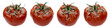 set of four bad with rot and mold tomatoes shot from different angles isolated white background as a concept of poor storage of vegetables,