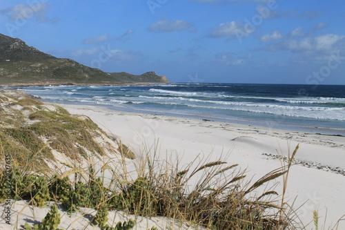 Fotografija  Beach scene, Cape of Good Hope