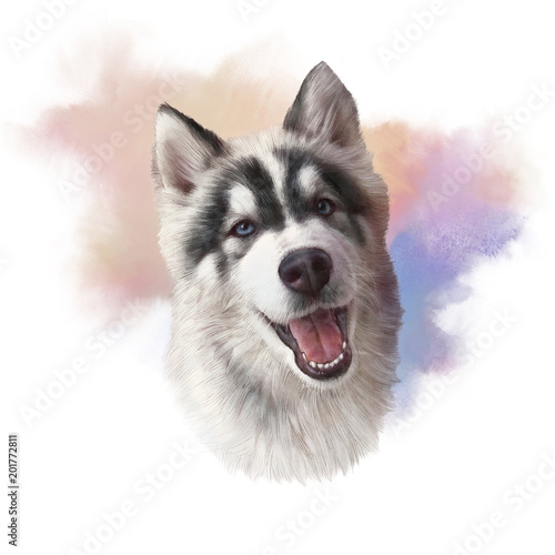 c6ff8bfe6 Dog is man's best friend. Watercolor Animal collection: Dogs. Hand Painted  Illustration of Pets. Good for print T-shirt, pillow