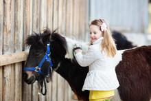 Kids Riding Pony. Child On Hor...