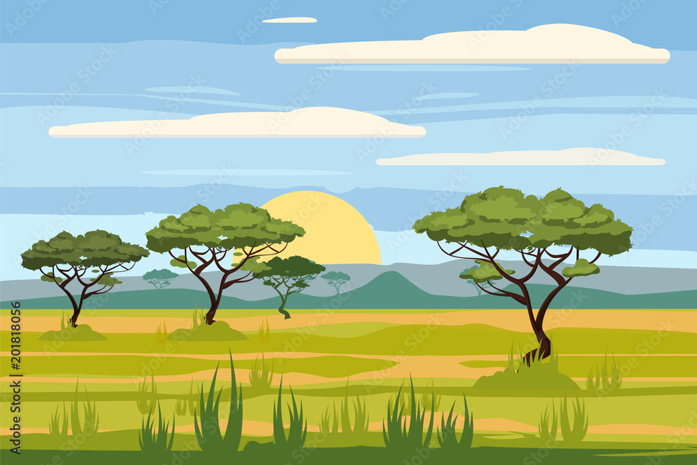 Fototapeta African landscape, savannah, sunset, vector, illustration, cartoon style, isolated
