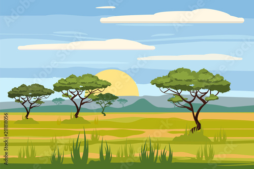 Obraz na plátně African landscape, savannah, sunset, vector, illustration, cartoon style, isolat