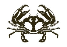 Dark Crab Silhouette With Larg...