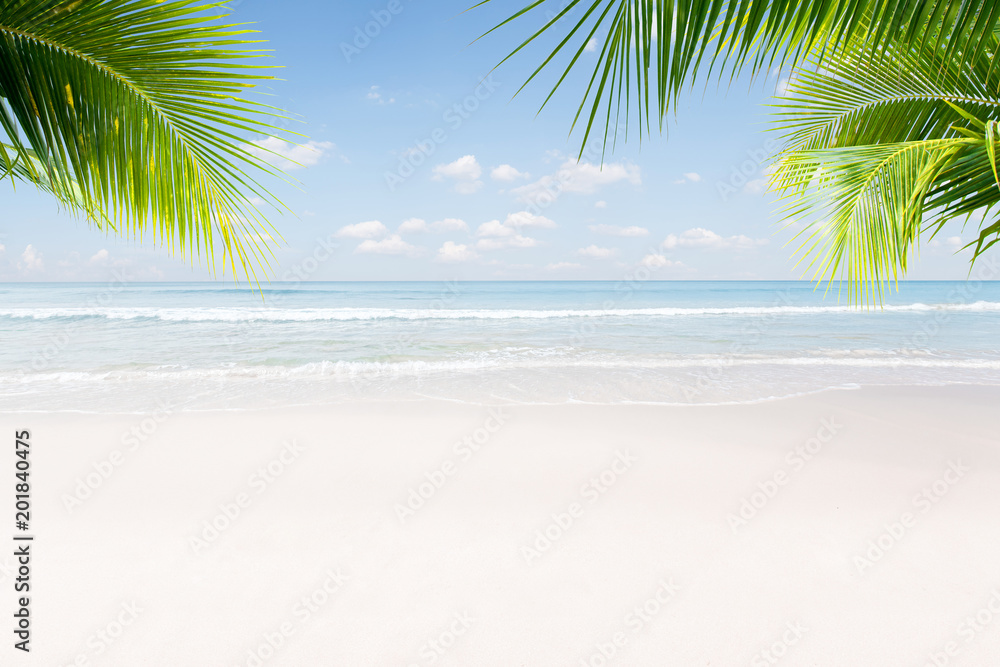 Fototapety, obrazy: View of nice tropical beach with some palms