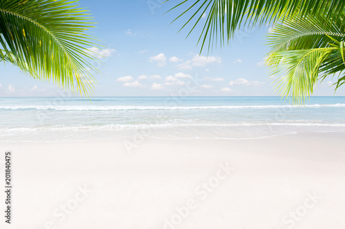 View of nice tropical beach with some palms Wallpaper Mural