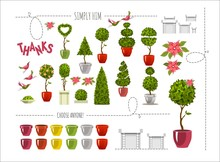 Set Of Street Plants In Pots