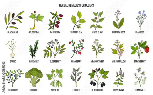 Photo  Best medicinal herbs for ulcers