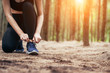 Asian girl is exercising at the weekend and she is tying shoelaces in a pine forest green and lush beautiful. Sport girl and lifestyle concept.