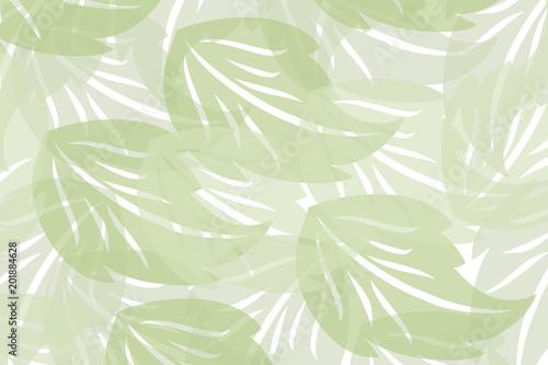 Fototapeta zielone liście na białym tle  obraz