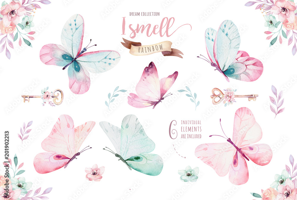 Fototapeta Watercolor colorful butterflies, isolated on white background. blue, yellow, pink and red butterfly illustration.