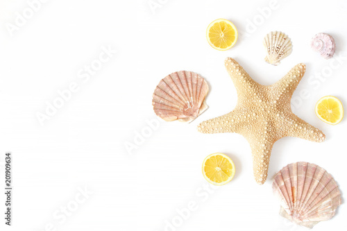 Composition of exotic seashells, oyster, starfish and lemon slices on white wooden background. Tropical summer vacation or sea food concept. Flat lay, top view. Marine design.